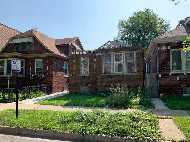 6533 S Vernon Avenue, Chicago, IL 60637 (MLS #10488689) :: Angela Walker Homes Real Estate Group