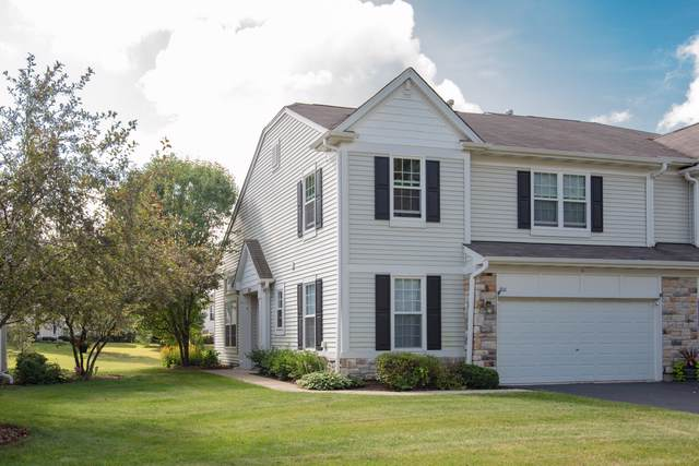 206 Terra Springs Circle, Volo, IL 60020 (MLS #10488709) :: Property Consultants Realty