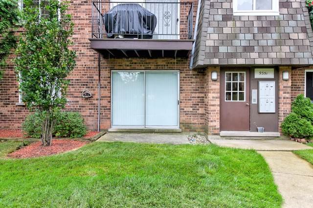 9351 Bay Colony Drive 1E, Des Plaines, IL 60016 (MLS #10488721) :: Ryan Dallas Real Estate