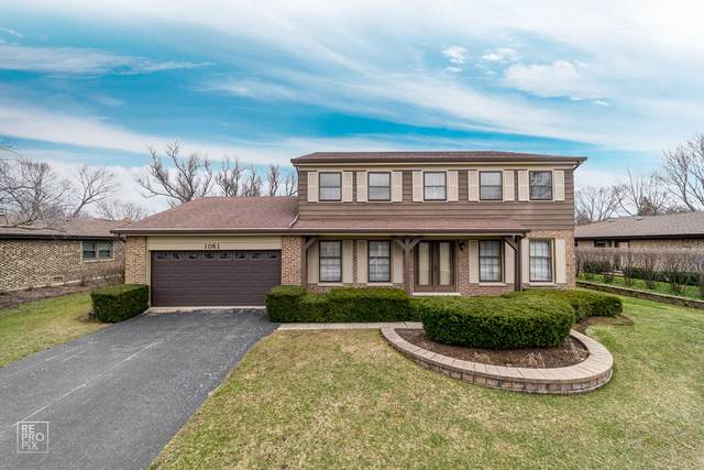 1061 S Plum Tree Lane, Palatine, IL 60067 (MLS #10488773) :: The Wexler Group at Keller Williams Preferred Realty