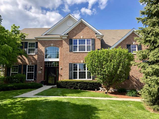3 Nandina Court, Bolingbrook, IL 60490 (MLS #10488877) :: Property Consultants Realty