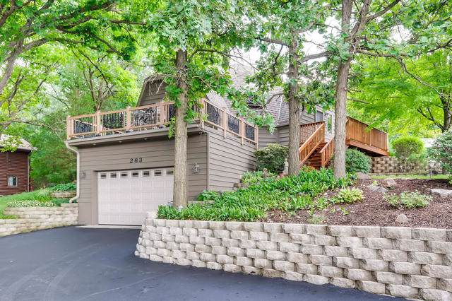 263 Melody Lane, Carpentersville, IL 60110 (MLS #10488880) :: Ryan Dallas Real Estate