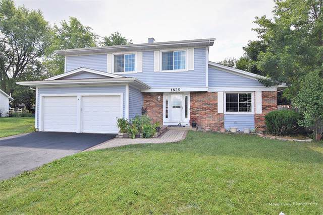 1625 Brook Court, Aurora, IL 60504 (MLS #10488987) :: The Dena Furlow Team - Keller Williams Realty