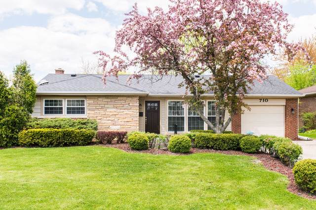 710 W Dresser Drive, Mount Prospect, IL 60056 (MLS #10489097) :: Berkshire Hathaway HomeServices Snyder Real Estate