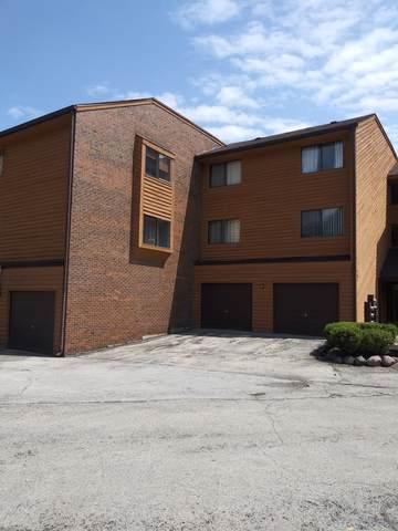 9553 Arrowhead Drive 2E, Hickory Hills, IL 60457 (MLS #10489133) :: Baz Realty Network   Keller Williams Elite