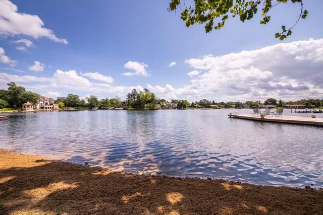 313 Murphy Lake Lane, Park Ridge, IL 60068 (MLS #10489405) :: Janet Jurich Realty Group