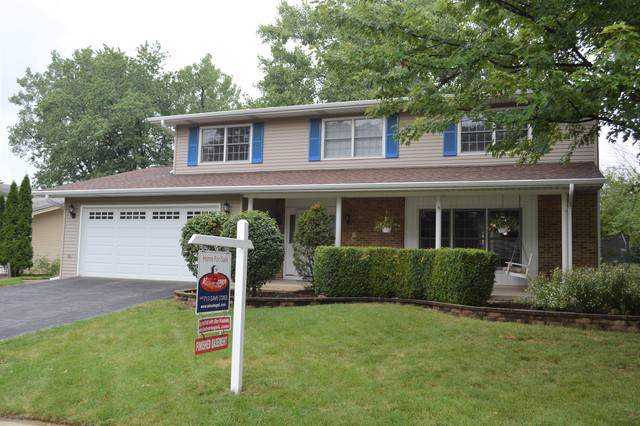 6510 Terrace Drive, Downers Grove, IL 60516 (MLS #10489464) :: Baz Realty Network   Keller Williams Elite