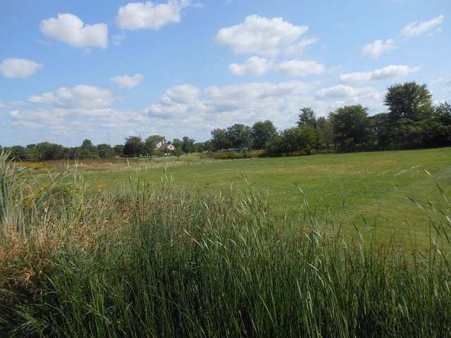 LOT 21 Anna Lane, Monee, IL 60449 (MLS #10489466) :: The Wexler Group at Keller Williams Preferred Realty