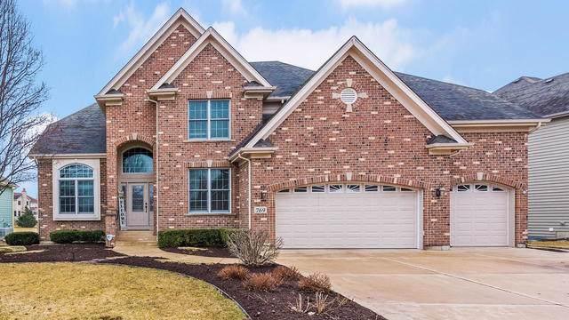 769 Brighton Drive, Sugar Grove, IL 60554 (MLS #10489487) :: Ani Real Estate