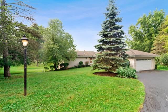 23578 N Old Barrington Road, Lake Barrington, IL 60010 (MLS #10489552) :: Ryan Dallas Real Estate