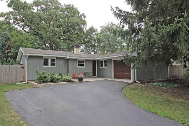 919 Granville Avenue, Mundelein, IL 60060 (MLS #10489779) :: Berkshire Hathaway HomeServices Snyder Real Estate