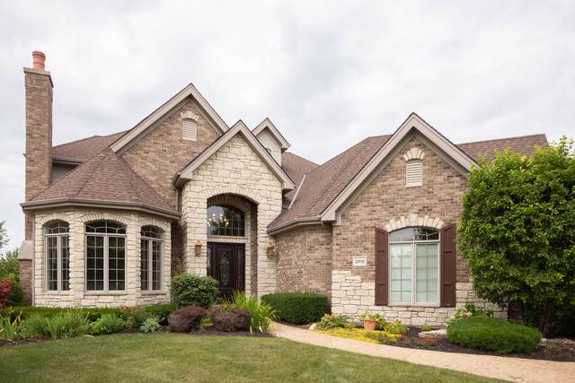22458 Cobble Stone Trail, Frankfort, IL 60423 (MLS #10489781) :: Angela Walker Homes Real Estate Group