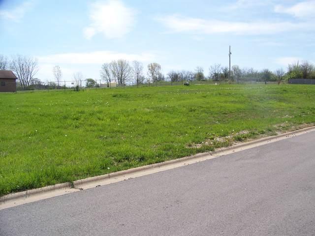 934 Arrowhead Drive, Elwood, IL 60421 (MLS #10489785) :: Angela Walker Homes Real Estate Group