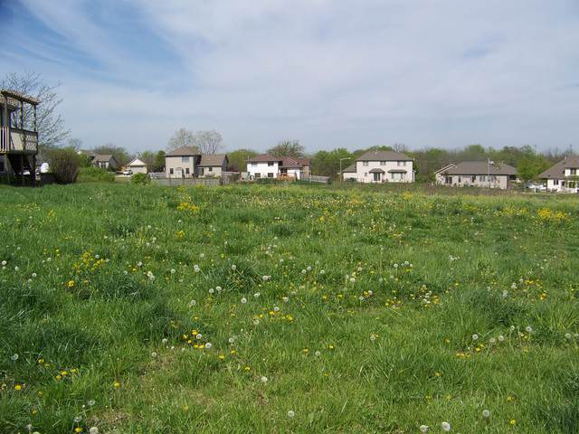 945 Arrowhead Drive, Elwood, IL 60421 (MLS #10489915) :: Angela Walker Homes Real Estate Group