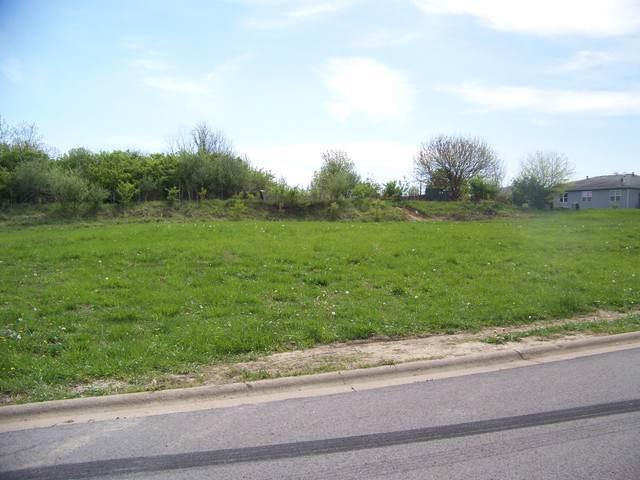 946 Arrowhead Drive, Elwood, IL 60421 (MLS #10489932) :: Angela Walker Homes Real Estate Group