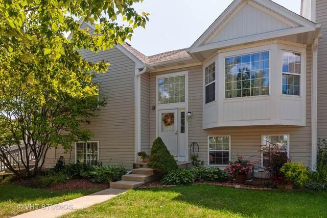 1202 Fox Hill Lane, North Aurora, IL 60542 (MLS #10490057) :: Property Consultants Realty