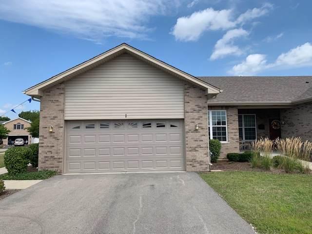 1158 Mandalay Lane, Bolingbrook, IL 60490 (MLS #10490059) :: Property Consultants Realty
