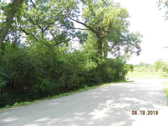 120 Rainbow Road, North Barrington, IL 60010 (MLS #10490136) :: Ryan Dallas Real Estate