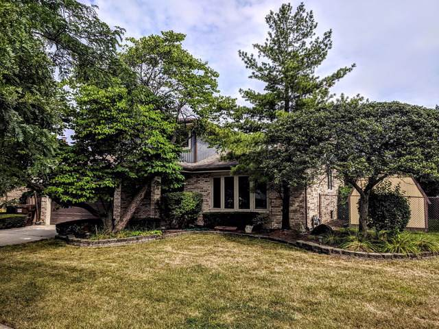 8300 164th Court, Tinley Park, IL 60477 (MLS #10490211) :: Property Consultants Realty