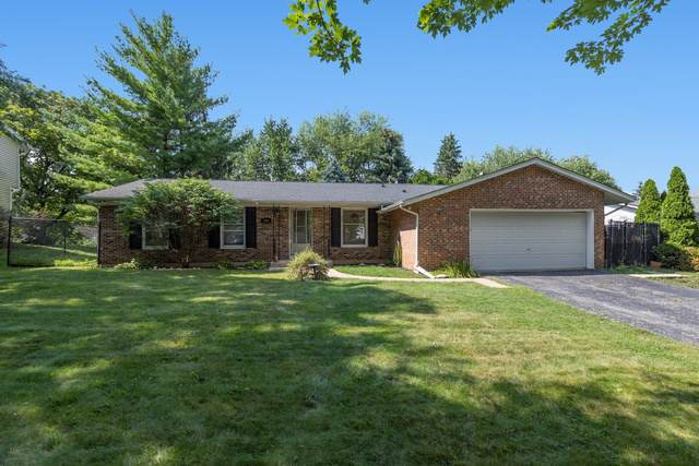 508 Falmore Lane, Bolingbrook, IL 60440 (MLS #10490269) :: The Wexler Group at Keller Williams Preferred Realty