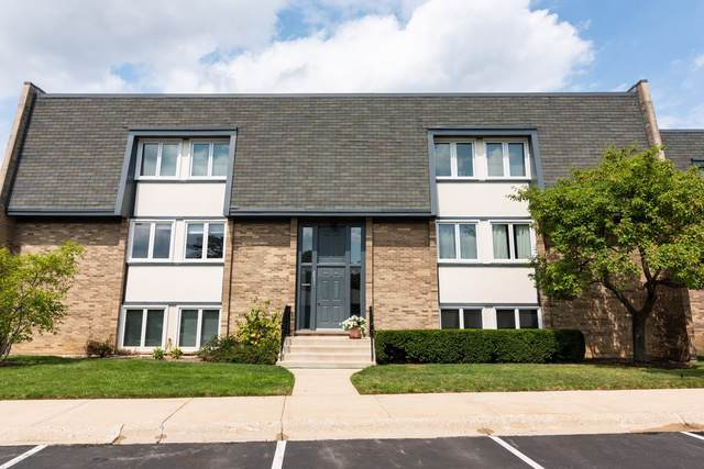 2031 Ammer Ridge Court #101, Glenview, IL 60025 (MLS #10490330) :: Property Consultants Realty
