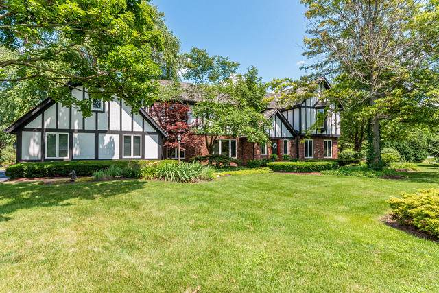 673 Tyne Court, Inverness, IL 60010 (MLS #10490342) :: Ani Real Estate