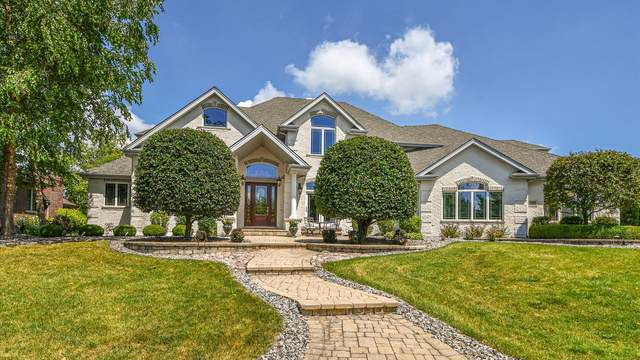 11871 Coquille Drive, Frankfort, IL 60423 (MLS #10490442) :: Berkshire Hathaway HomeServices Snyder Real Estate