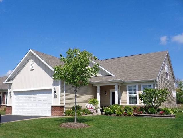 2850 Stoney Creek Drive, Elgin, IL 60124 (MLS #10490574) :: Ani Real Estate
