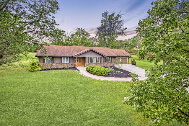 24350 S Laura Lane, Crete, IL 60417 (MLS #10490608) :: Property Consultants Realty