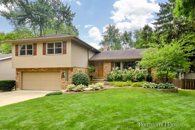1606 Center Avenue, Wheaton, IL 60189 (MLS #10490724) :: Property Consultants Realty
