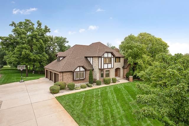 13110 Da Vinci Street, Lemont, IL 60439 (MLS #10490796) :: Berkshire Hathaway HomeServices Snyder Real Estate