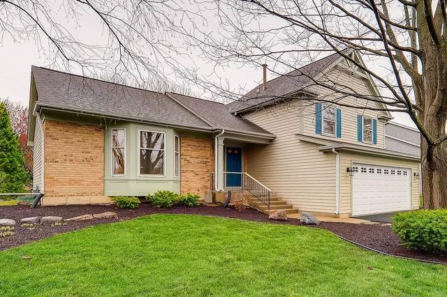 325 Kingsbury Drive, Schaumburg, IL 60193 (MLS #10490865) :: Berkshire Hathaway HomeServices Snyder Real Estate