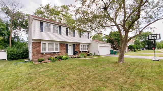 671 Wyngate Lane, Buffalo Grove, IL 60089 (MLS #10491196) :: The Perotti Group | Compass Real Estate
