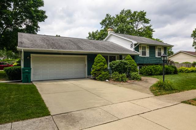 776 Macarthur Drive, Buffalo Grove, IL 60089 (MLS #10491351) :: Angela Walker Homes Real Estate Group