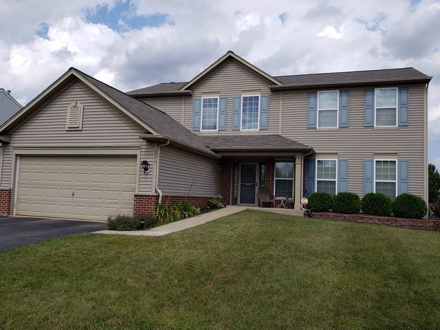226 Clubhouse Street, Bolingbrook, IL 60490 (MLS #10491366) :: Property Consultants Realty
