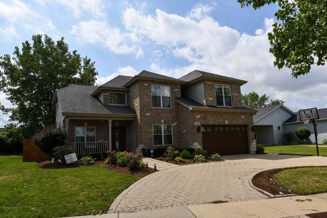 218 Homewood Drive, Bolingbrook, IL 60440 (MLS #10491577) :: Angela Walker Homes Real Estate Group