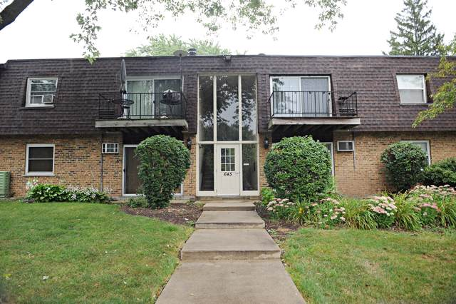 645 Grove Drive #102, Buffalo Grove, IL 60089 (MLS #10491617) :: The Perotti Group | Compass Real Estate