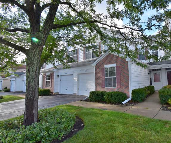 30 Tyler Court A, Streamwood, IL 60107 (MLS #10491776) :: Ryan Dallas Real Estate
