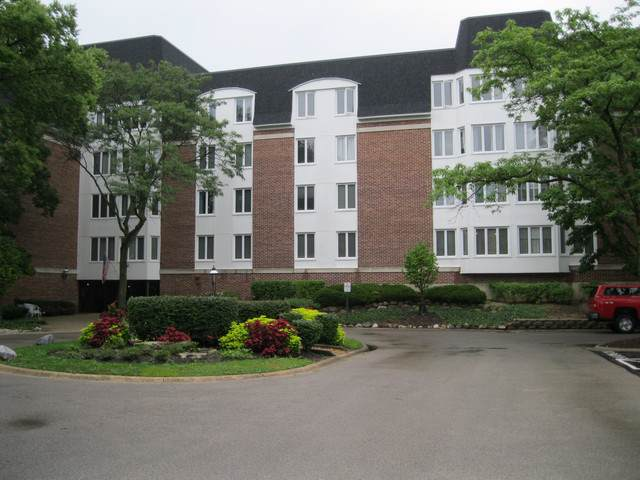 250 Lake Boulevard #221, Buffalo Grove, IL 60089 (MLS #10491778) :: The Perotti Group | Compass Real Estate