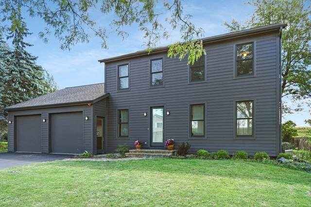 1919 W Alder Drive, Hoffman Estates, IL 60192 (MLS #10491847) :: The Dena Furlow Team - Keller Williams Realty