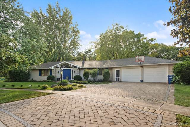 115 Anderson Court, Yorkville, IL 60560 (MLS #10491981) :: John Lyons Real Estate