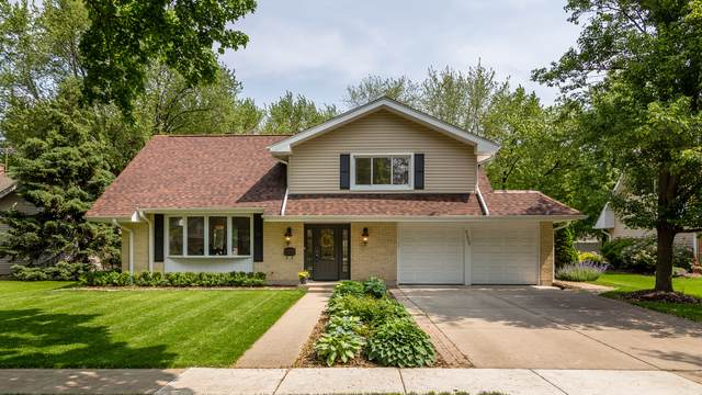 4228 Wilson Avenue, Rolling Meadows, IL 60008 (MLS #10491998) :: The Perotti Group | Compass Real Estate