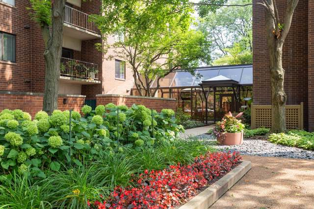 2150 Bouterse Street #407, Park Ridge, IL 60068 (MLS #10492005) :: Berkshire Hathaway HomeServices Snyder Real Estate
