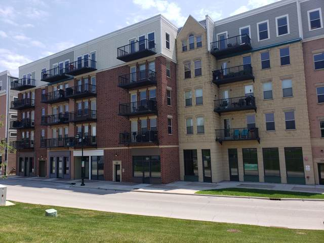 332 River Street #4505, Lemont, IL 60439 (MLS #10492032) :: Angela Walker Homes Real Estate Group