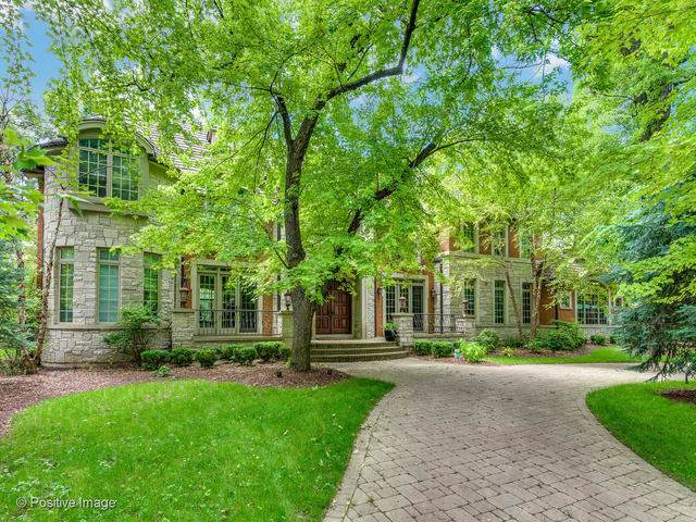 1000 S Rose Avenue, Park Ridge, IL 60068 (MLS #10492042) :: Berkshire Hathaway HomeServices Snyder Real Estate