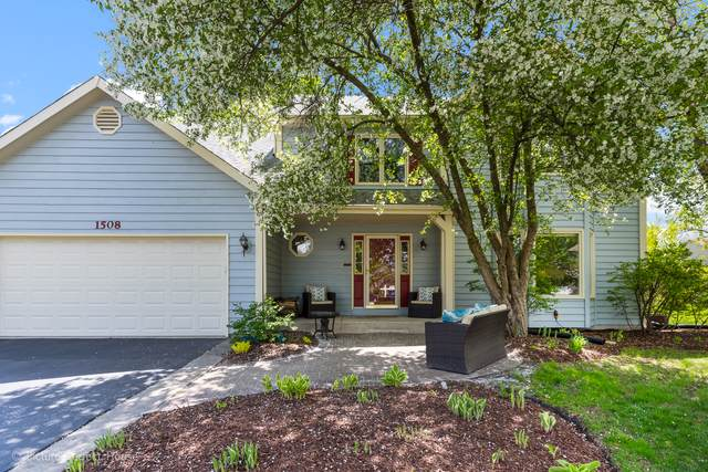 1508 Newman Court, Naperville, IL 60564 (MLS #10492095) :: The Wexler Group at Keller Williams Preferred Realty