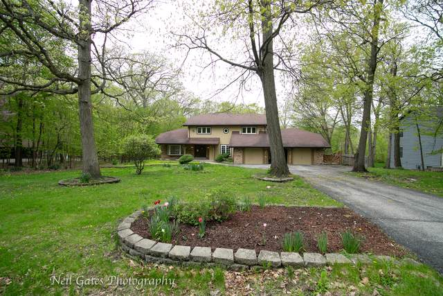 23840 S Plum Valley Drive, Crete, IL 60417 (MLS #10492432) :: The Wexler Group at Keller Williams Preferred Realty