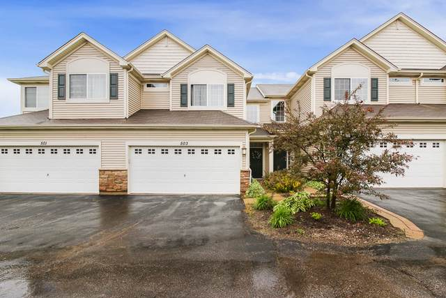 503 S Jade Lane, Round Lake, IL 60073 (MLS #10492587) :: Property Consultants Realty