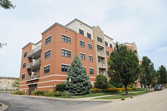 14 S Prospect Street #308, Roselle, IL 60172 (MLS #10492654) :: Berkshire Hathaway HomeServices Snyder Real Estate