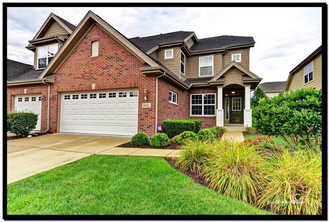 2555 Cedar Hill Lane, Woodridge, IL 60517 (MLS #10492774) :: Property Consultants Realty